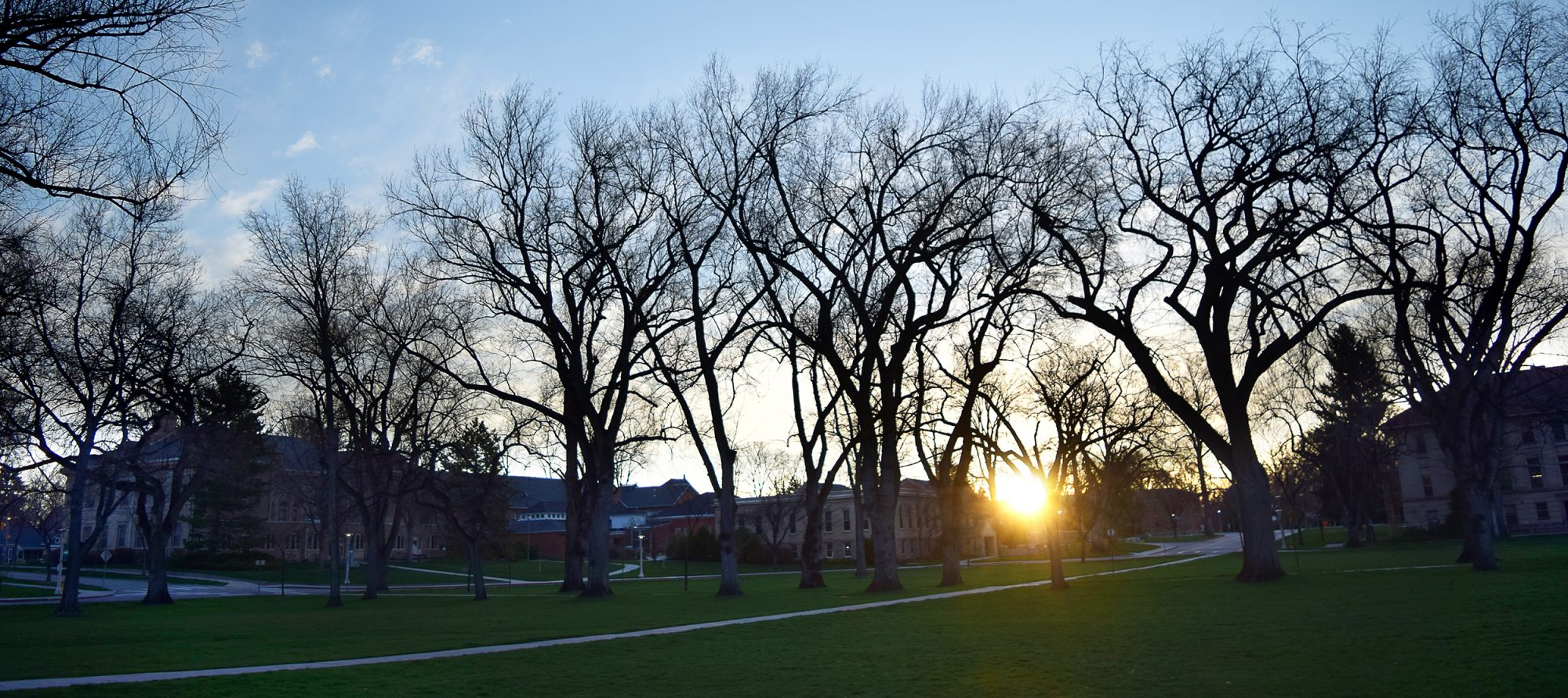 Sunrise on the Oval at Colorado State University